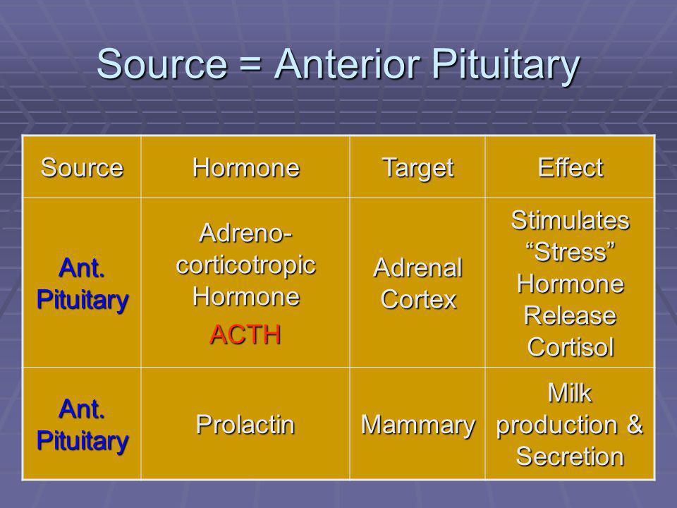 "47 Source = Anterior Pituitary SourceHormoneTargetEffect Ant. Pituitary Adreno- corticotropic Hormone ACTH Adrenal Cortex Stimulates ""Stress"" Hormone"