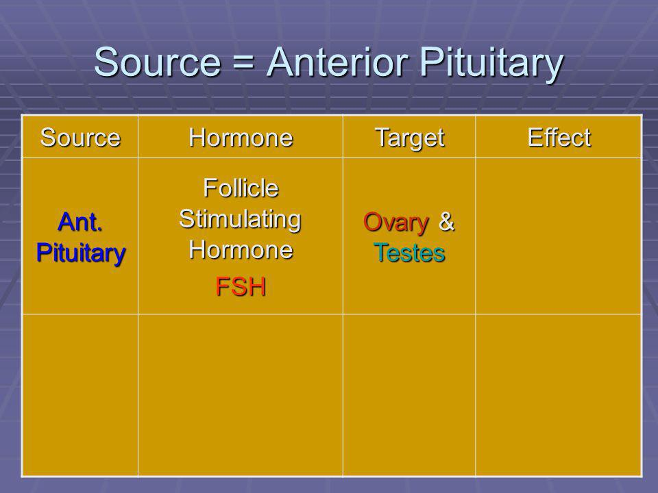 50 Source = Anterior Pituitary SourceHormoneTargetEffect Ant. Pituitary Follicle Stimulating Hormone FSH Ovary & Testes