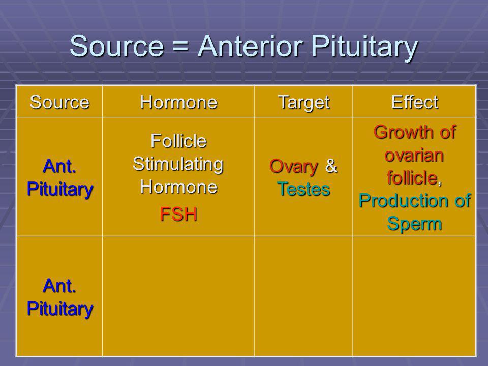 52 Source = Anterior Pituitary SourceHormoneTargetEffect Ant. Pituitary Follicle Stimulating Hormone FSH Ovary & Testes Growth of ovarian follicle, Pr