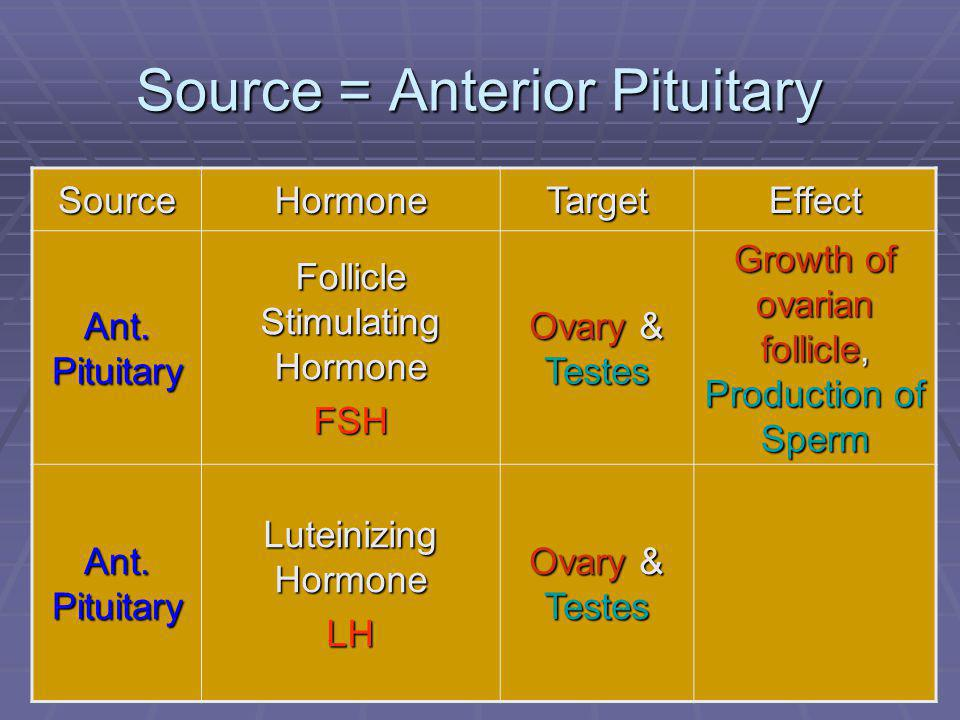 54 Source = Anterior Pituitary SourceHormoneTargetEffect Ant. Pituitary Follicle Stimulating Hormone FSH Ovary & Testes Growth of ovarian follicle, Pr