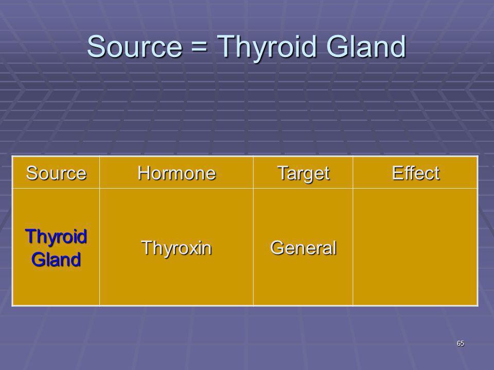 65 Source = Thyroid Gland SourceHormoneTargetEffect Thyroid Gland ThyroxinGeneral