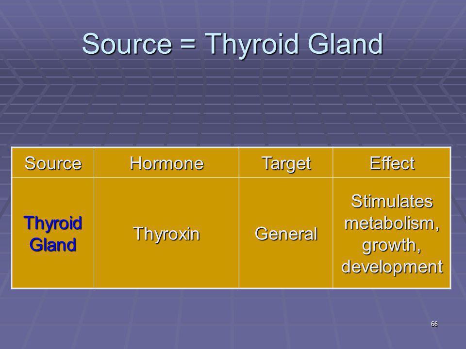66 Source = Thyroid Gland SourceHormoneTargetEffect Thyroid Gland ThyroxinGeneral Stimulates metabolism, growth, development