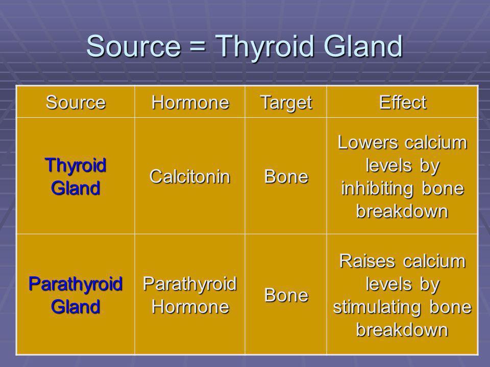 75 Source = Thyroid Gland SourceHormoneTargetEffect Thyroid Gland CalcitoninBone Lowers calcium levels by inhibiting bone breakdown Parathyroid Gland Parathyroid Hormone Bone Raises calcium levels by stimulating bone breakdown