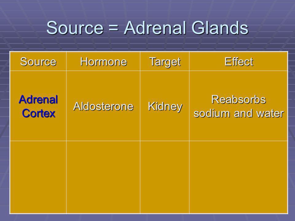 81 Source = Adrenal Glands SourceHormoneTargetEffect Adrenal Cortex AldosteroneKidney Reabsorbs sodium and water