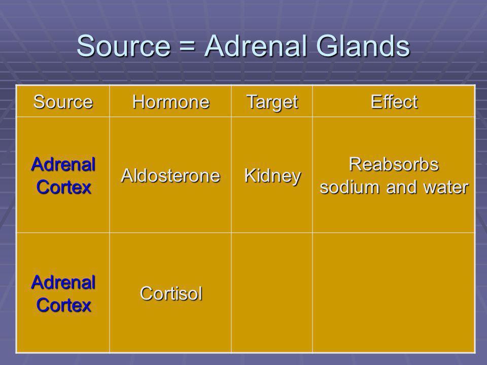 83 Source = Adrenal Glands SourceHormoneTargetEffect Adrenal Cortex AldosteroneKidney Reabsorbs sodium and water Adrenal Cortex Cortisol