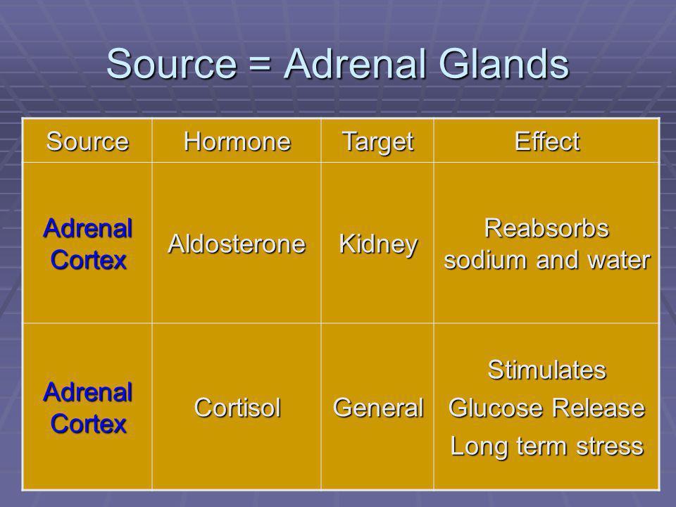 85 Source = Adrenal Glands SourceHormoneTargetEffect Adrenal Cortex AldosteroneKidney Reabsorbs sodium and water Adrenal Cortex CortisolGeneralStimulates Glucose Release Long term stress