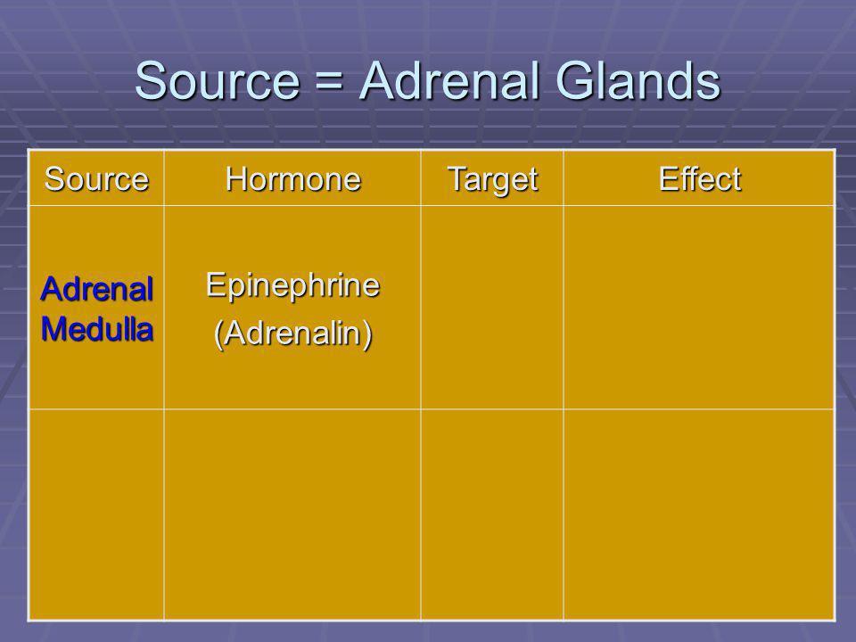 88 Source = Adrenal Glands SourceHormoneTargetEffect Adrenal Medulla Epinephrine(Adrenalin)