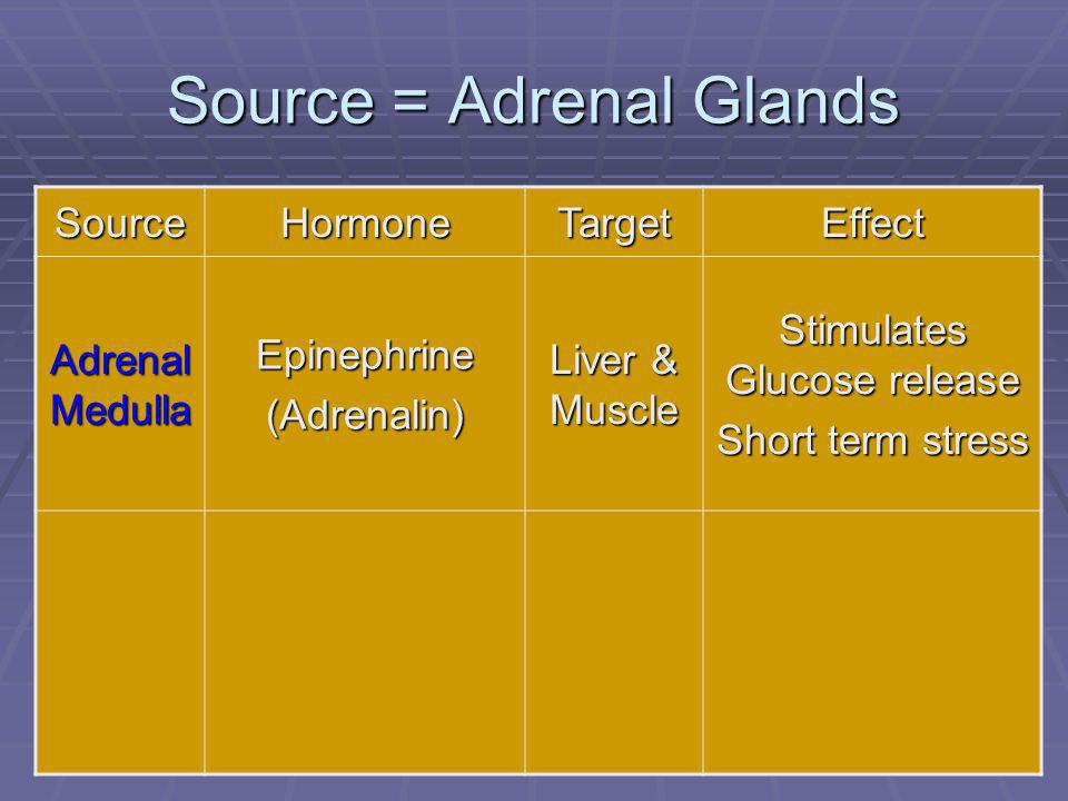 90 Source = Adrenal Glands SourceHormoneTargetEffect Adrenal Medulla Epinephrine(Adrenalin) Liver & Muscle Stimulates Glucose release Short term stres