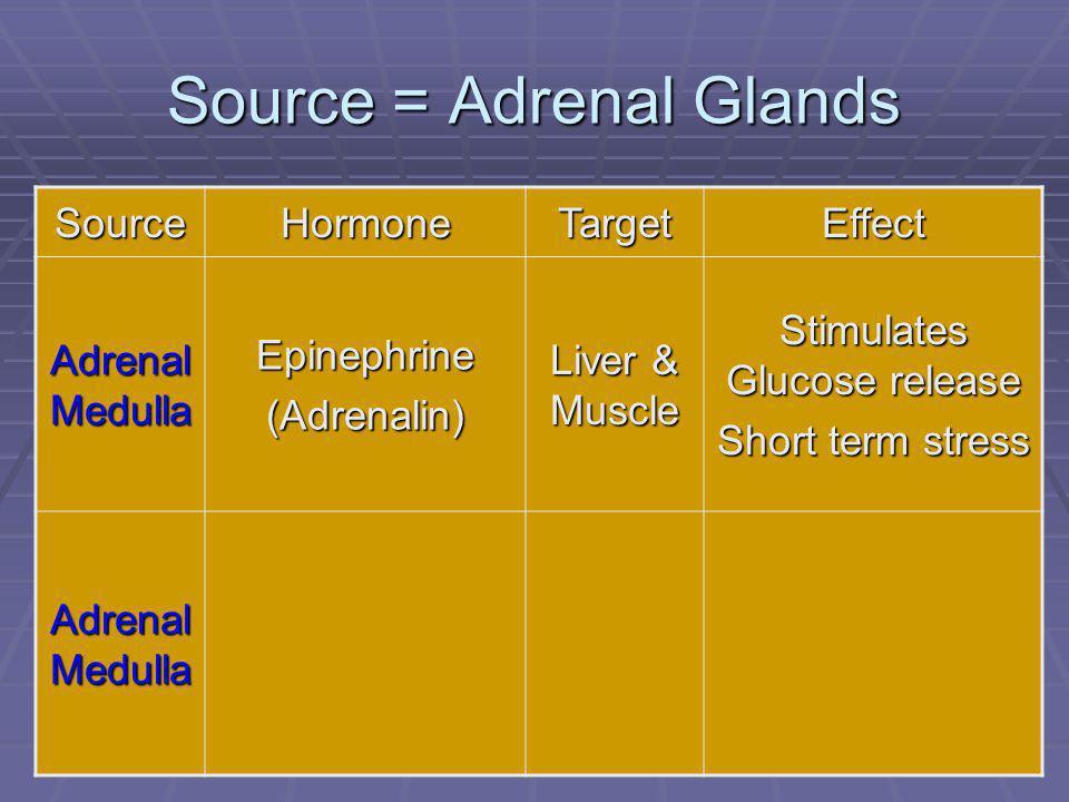 91 Source = Adrenal Glands SourceHormoneTargetEffect Adrenal Medulla Epinephrine(Adrenalin) Liver & Muscle Stimulates Glucose release Short term stress Adrenal Medulla