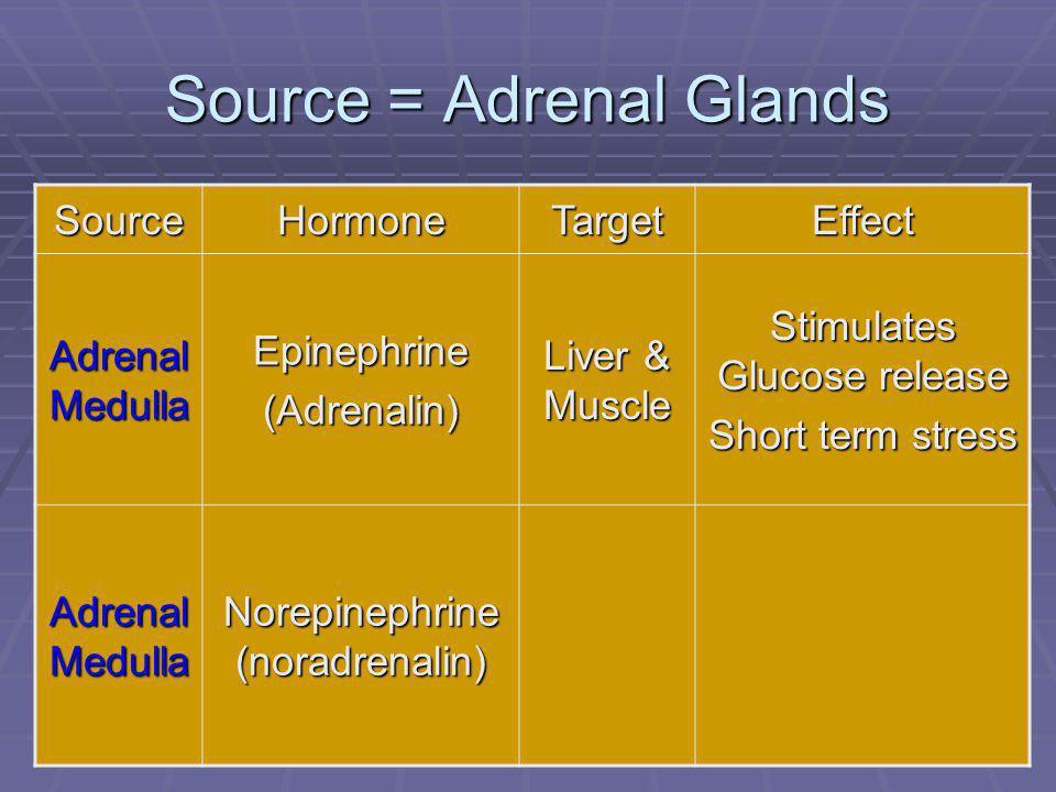 92 Source = Adrenal Glands SourceHormoneTargetEffect Adrenal Medulla Epinephrine(Adrenalin) Liver & Muscle Stimulates Glucose release Short term stress Adrenal Medulla Norepinephrine (noradrenalin)