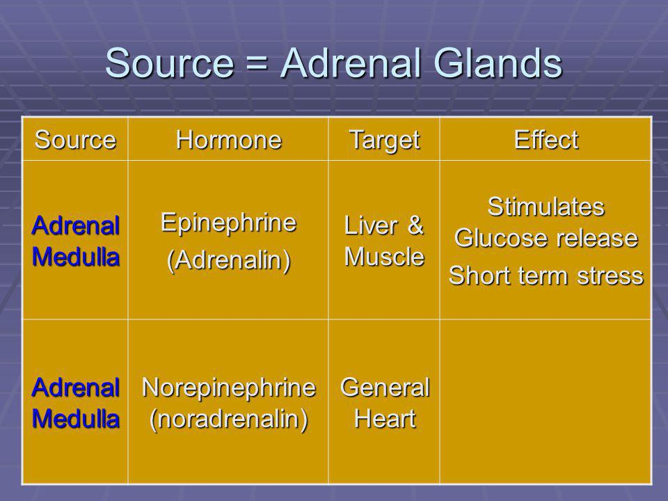 93 Source = Adrenal Glands SourceHormoneTargetEffect Adrenal Medulla Epinephrine(Adrenalin) Liver & Muscle Stimulates Glucose release Short term stress Adrenal Medulla Norepinephrine (noradrenalin) General Heart