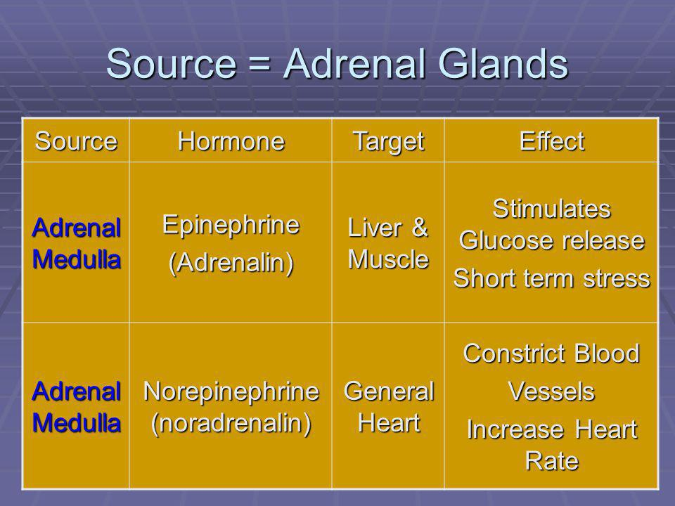 94 Source = Adrenal Glands SourceHormoneTargetEffect Adrenal Medulla Epinephrine(Adrenalin) Liver & Muscle Stimulates Glucose release Short term stress Adrenal Medulla Norepinephrine (noradrenalin) General Heart Constrict Blood Vessels Increase Heart Rate