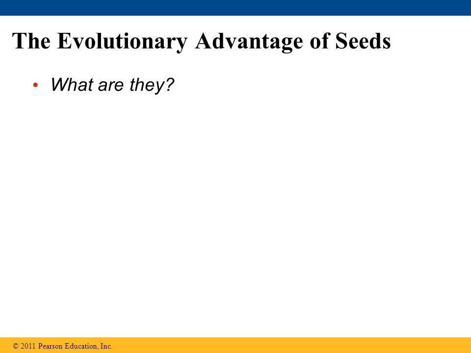 The Evolutionary Advantage of Seeds What are they? © 2011 Pearson Education, Inc.