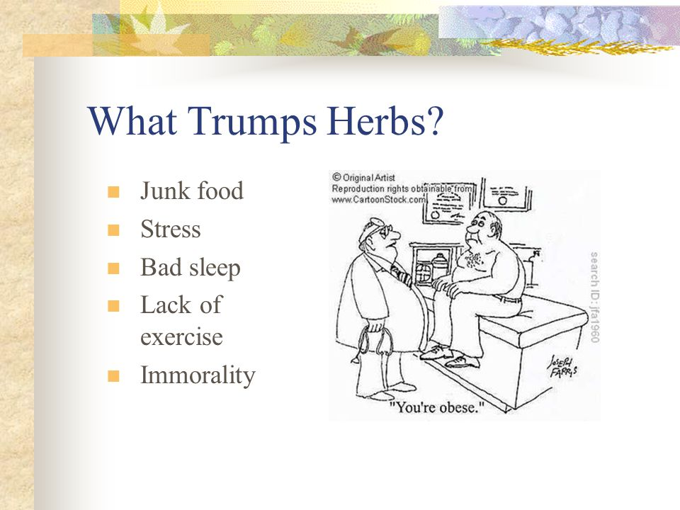 What Trumps Herbs? Junk food Stress Bad sleep Lack of exercise Immorality