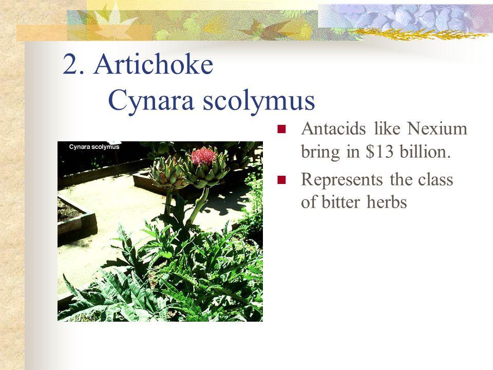 2. Artichoke Cynara scolymus Antacids like Nexium bring in $13 billion. Represents the class of bitter herbs