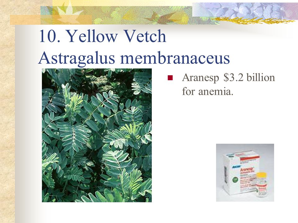 10. Yellow Vetch Astragalus membranaceus Aranesp $3.2 billion for anemia.