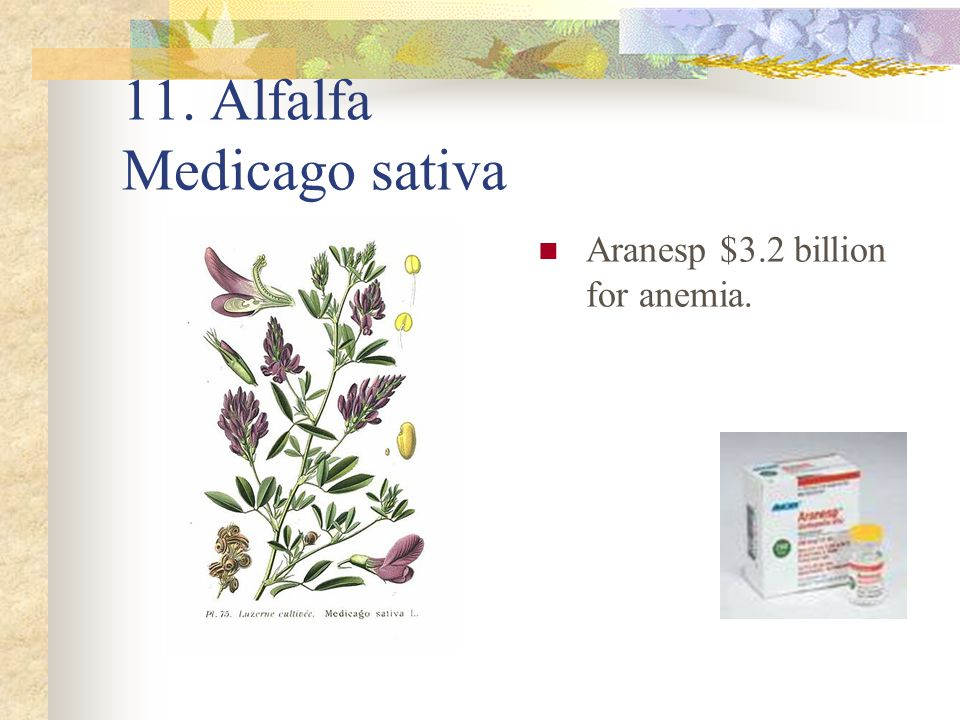 11. Alfalfa Medicago sativa Aranesp $3.2 billion for anemia.