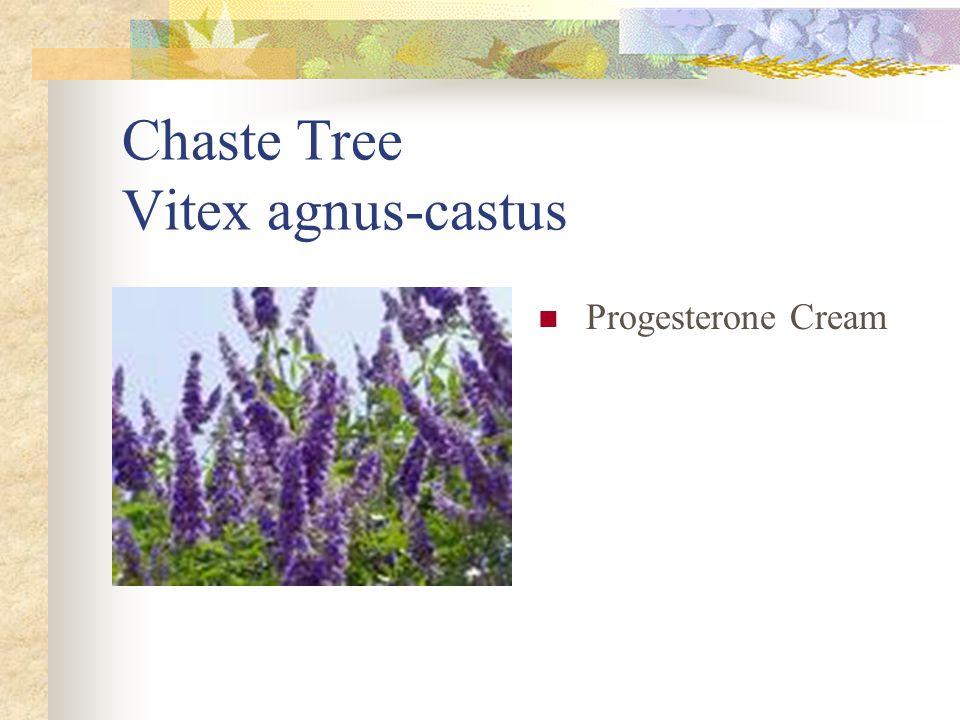 Chaste Tree Vitex agnus-castus Progesterone Cream