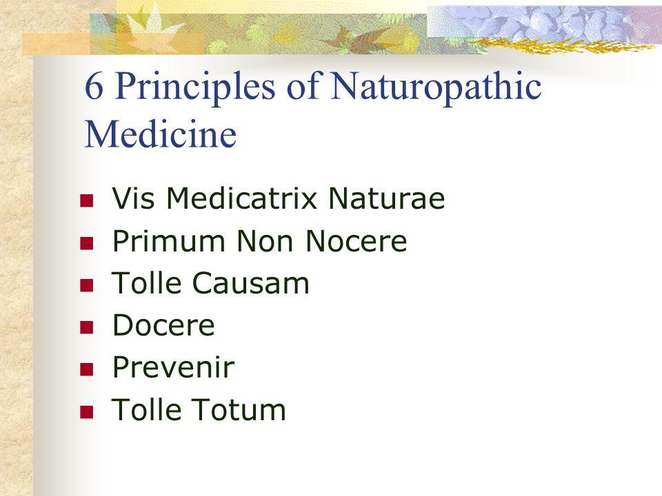 6 Principles of Naturopathic Medicine Vis Medicatrix Naturae Primum Non Nocere Tolle Causam Docere Prevenir Tolle Totum