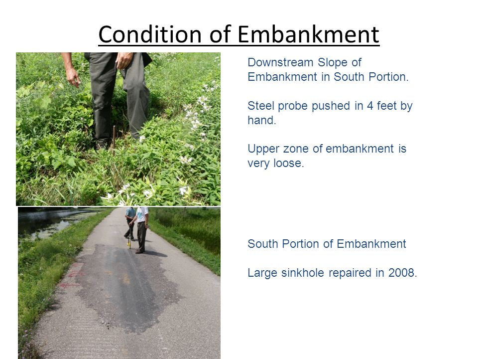 Condition of Embankment Downstream Slope of Embankment in South Portion.