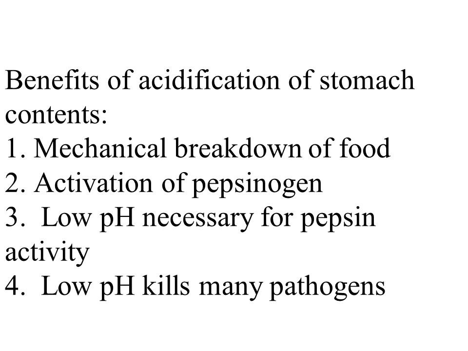 Benefits of acidification of stomach contents: 1. Mechanical breakdown of food 2.