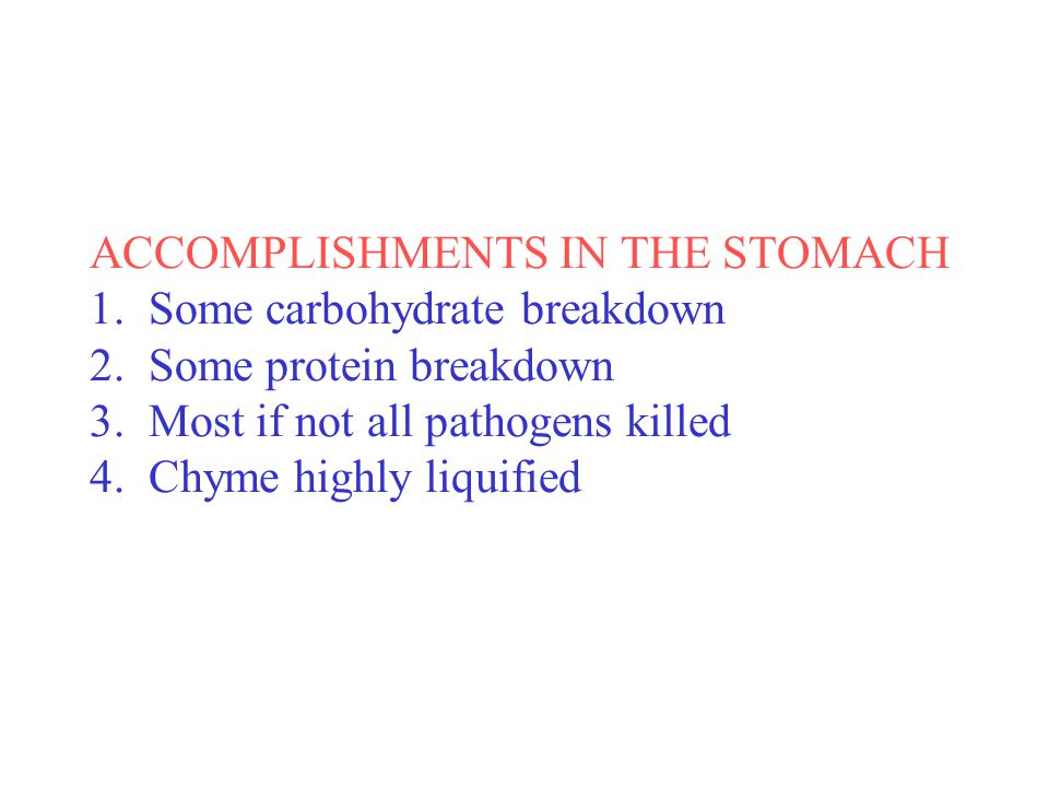 ACCOMPLISHMENTS IN THE STOMACH 1. Some carbohydrate breakdown 2.