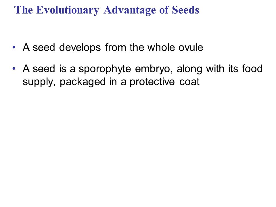 Stamen Filament Anther Stigma Carpel Style Ovary Petal Receptacle Ovule Sepal