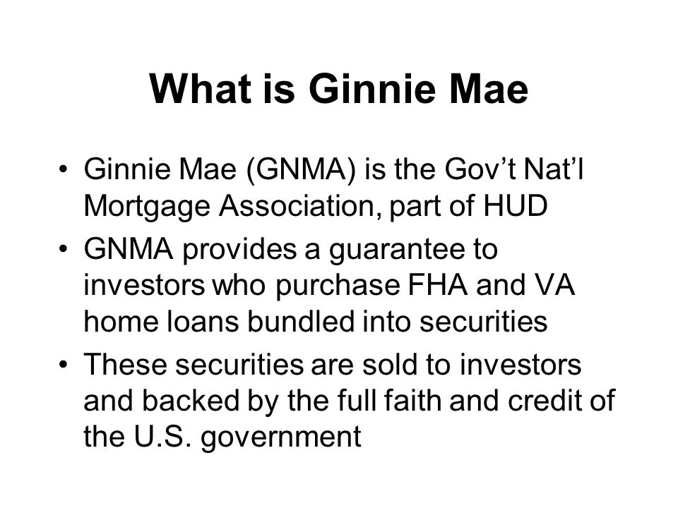 Overview Ginnie Mae Public-Private Partnership Expands home ownership to those with difficulty obtaining loans: minorities, low- moderate income, first time buyers Provides consumers more choice with increased price advantages and innovations Spreads some risk of default to private sector, benefiting taxpayers