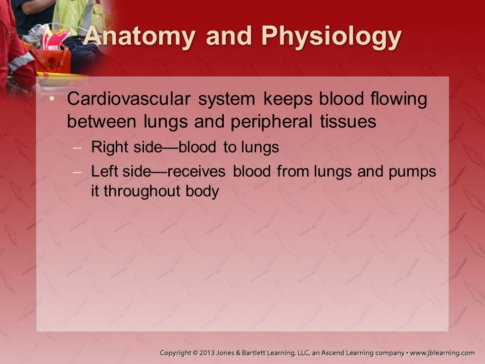 Shock Hypovolemic shock: Shock from inadequate blood volume –Volume can be lost as: Blood Plasma Electrolyte solution