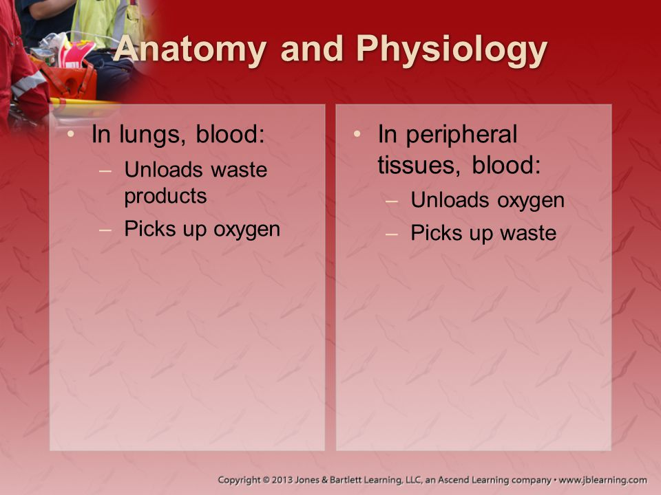 Hemorrhagic Shock Often due to: –Blunt or penetrating injuries –Long bone or pelvic fractures –Vascular injuries –Multisystem injury High incidence of exsanguinations: –Heart –Thoracic system –Abdominal system –Venous system –Liver