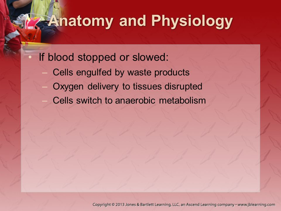 Anatomy and Physiology Circulatory system requires: –Functioning pump –Adequate fluid volume –Intact system of tubing