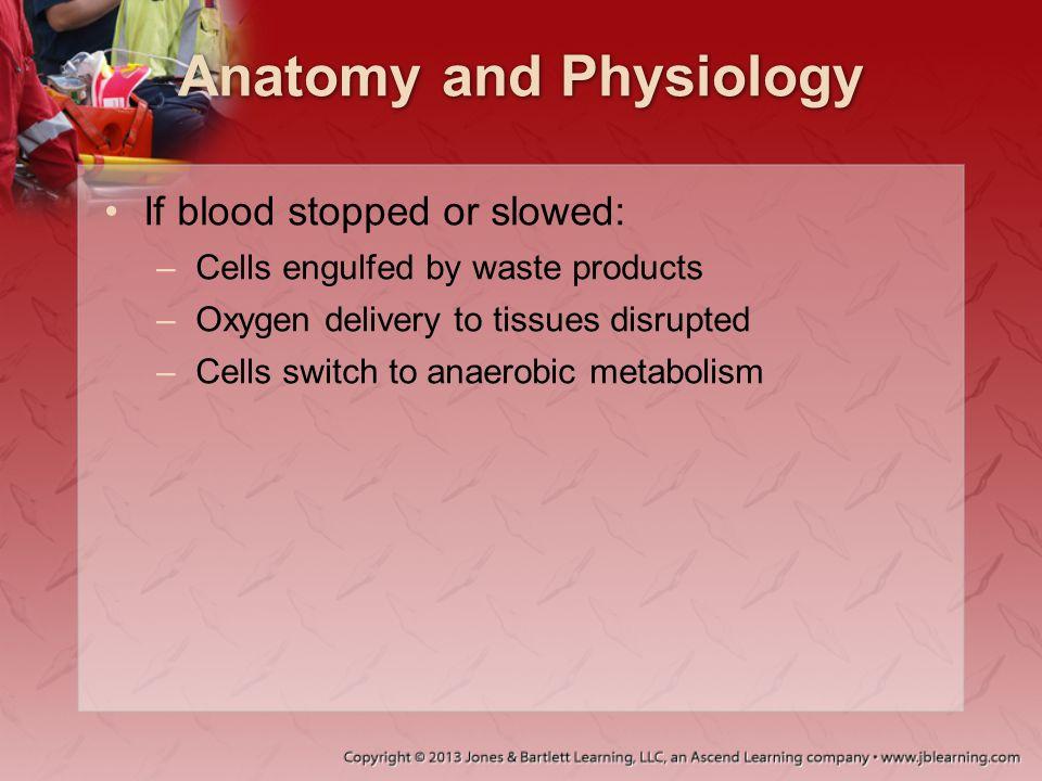 Hemorrhagic Shock Hypovolemic shock caused by hemorrhagic trauma is classified into four classes.