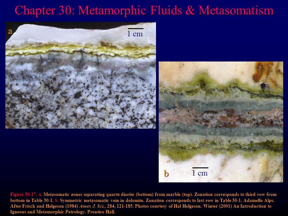 Chapter 30: Metamorphic Fluids & Metasomatism Figure 30-27.