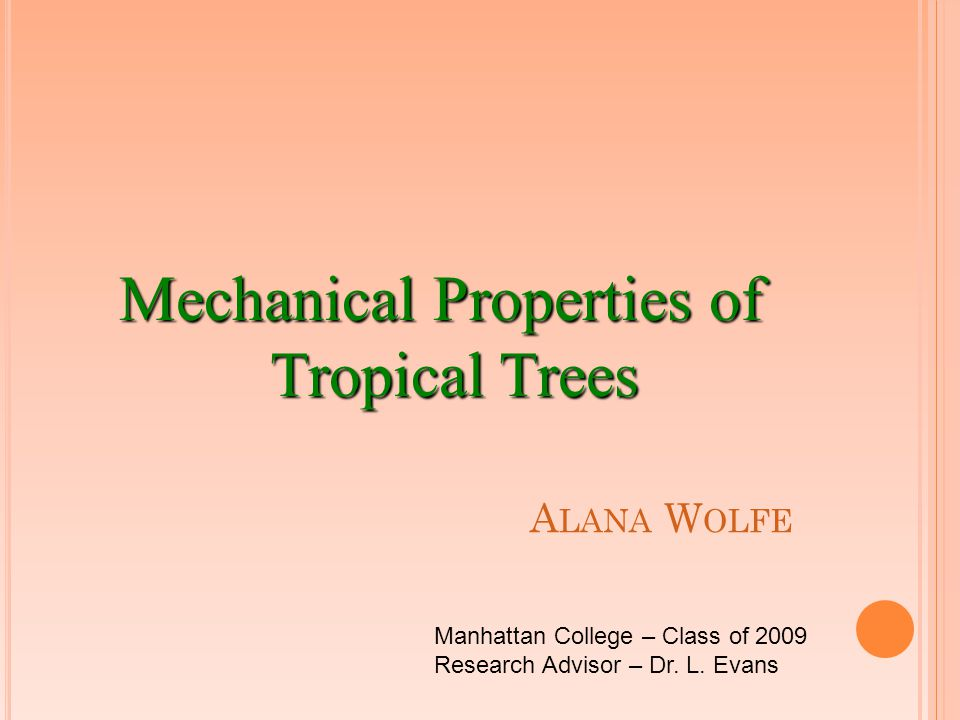 A LANA W OLFE Mechanical Properties of Tropical Trees Manhattan College – Class of 2009 Research Advisor – Dr. L. Evans