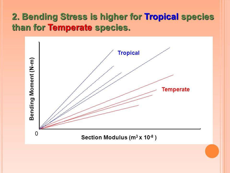2. Bending Stress is higher for Tropical species than for Temperate species.