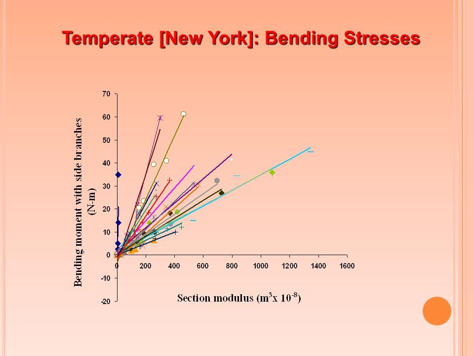 Temperate [New York]: Bending Stresses