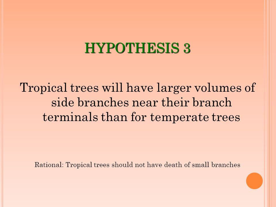 HYPOTHESIS 3 Tropical trees will have larger volumes of side branches near their branch terminals than for temperate trees Rational: Tropical trees sh