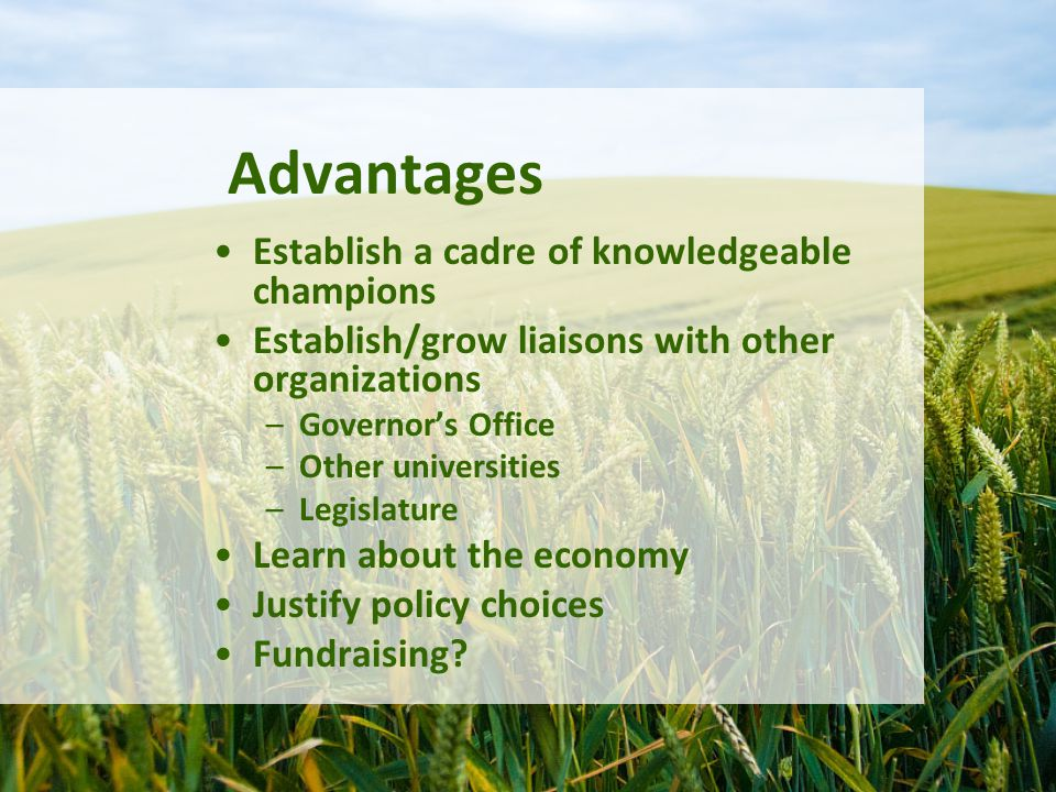 Advantages Establish a cadre of knowledgeable champions Establish/grow liaisons with other organizations –Governor's Office –Other universities –Legislature Learn about the economy Justify policy choices Fundraising