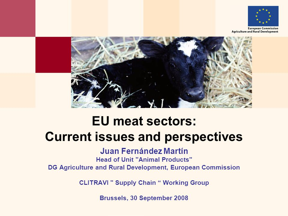 EU meat sectors: Current issues and perspectives Juan Fernández Martín Head of Unit Animal Products DG Agriculture and Rural Development, European Commission CLITRAVI Supply Chain Working Group Brussels, 30 September 2008