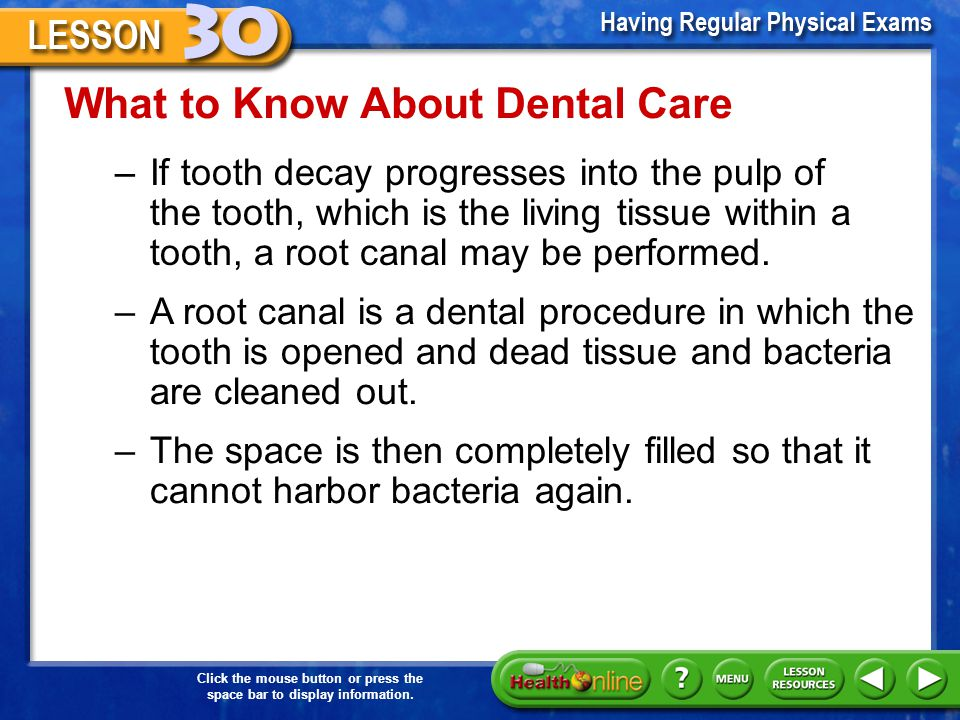 What to Know About Dental Care Tooth decay –The chief cause of dental decay is plaque. –The bacteria found in plaque excrete an acid waste product tha