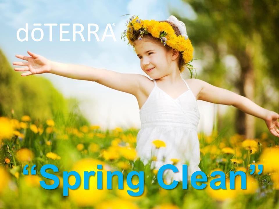 """""""Spring Clean"""""""