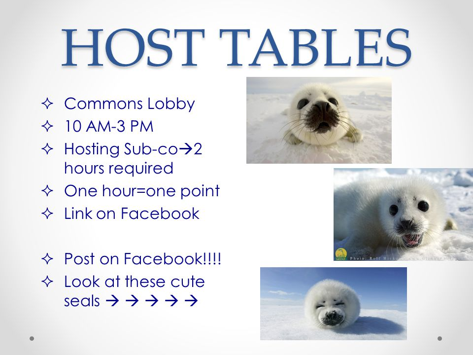 HOST TABLES  Commons Lobby  10 AM-3 PM  Hosting Sub-co  2 hours required  One hour=one point  Link on Facebook  Post on Facebook!!!.