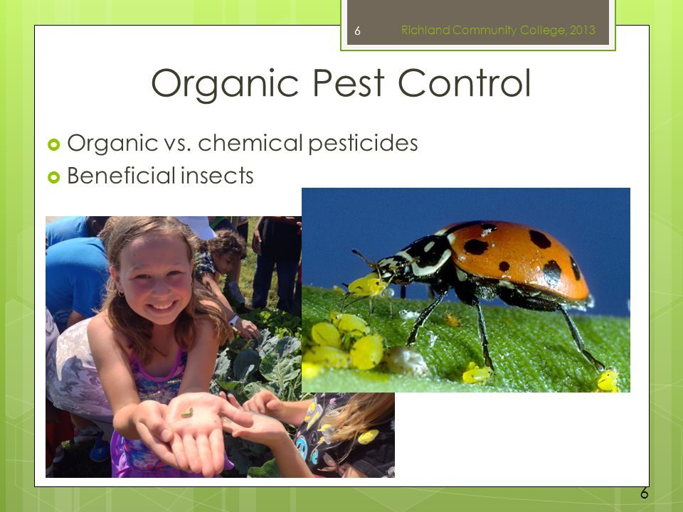 Organic Pest Control  Organic vs. chemical pesticides  Beneficial insects 6 6