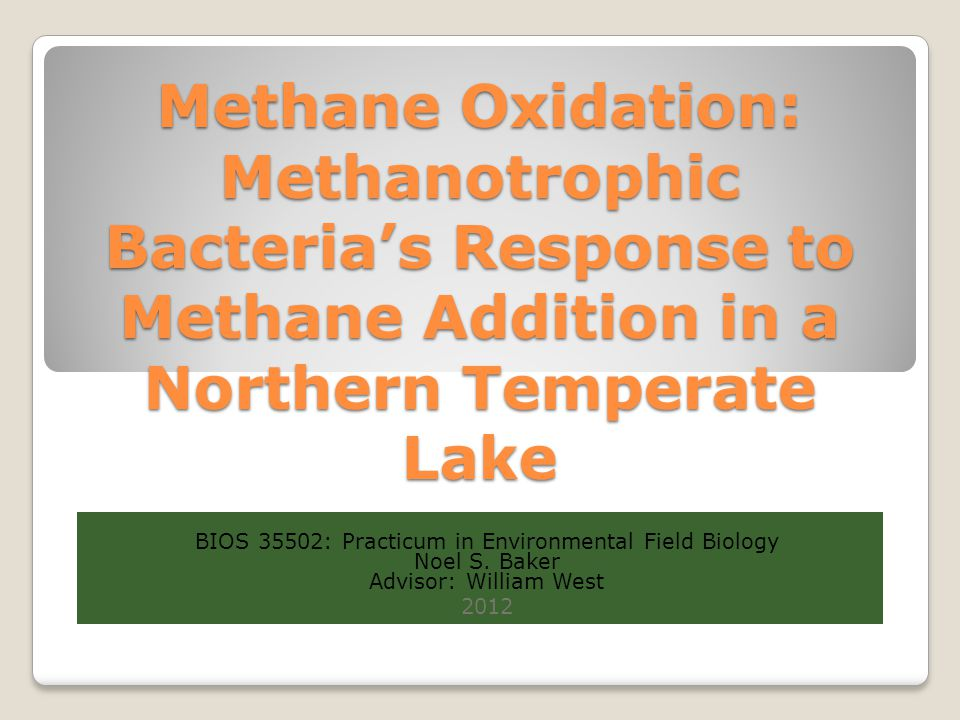 Methane Oxidation: Methanotrophic Bacteria's Response to Methane Addition in a Northern Temperate Lake BIOS 35502: Practicum in Environmental Field Bi