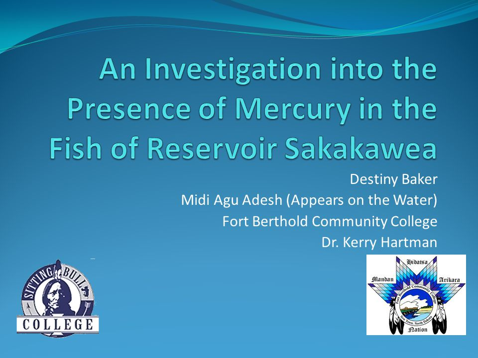 Destiny Baker Midi Agu Adesh (Appears on the Water) Fort Berthold Community College Dr.