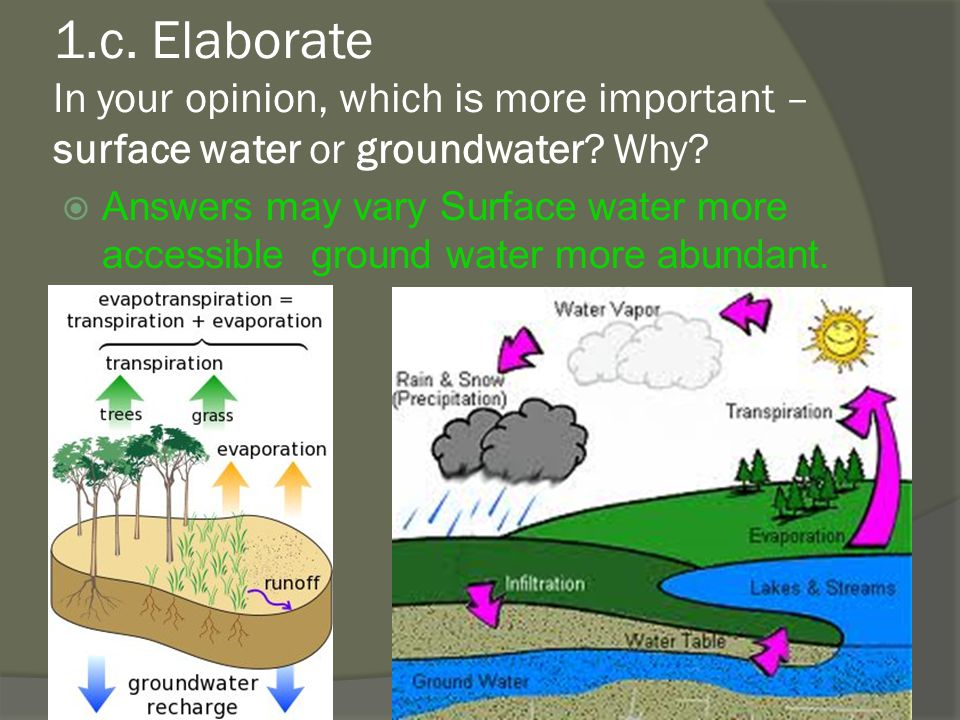 1.c.Elaborate In your opinion, which is more important – surface water or groundwater.