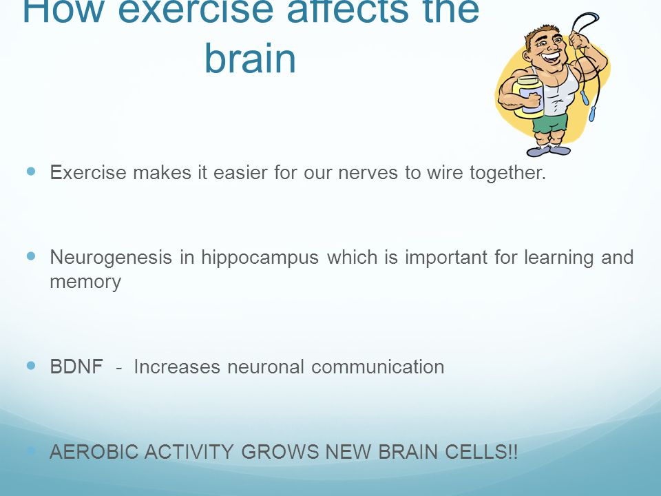 How exercise affects the brain Mood regulation Self-esteem Impulse control Combats toxic effects of stress hormones Improves neural arousal Combats depression Improves behavior Memory retention – Better encodes information