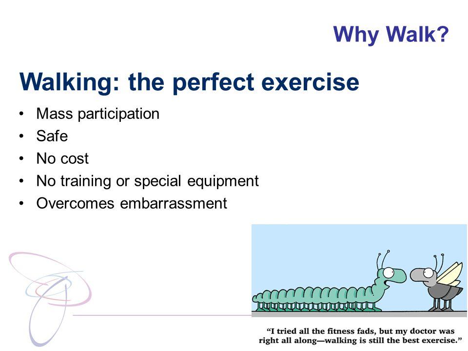 Why Walk.