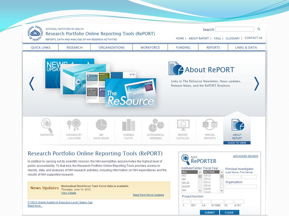 A few features of the website… NIH Research Portfolio Online Reporting Tool website provides access to: Report Catalog NIH Data Book Estimates of funding for Research, Condition, and Disease Categories (RCDC) Awards by Location or Organization RePORTER (RePORT Expenditure and Results Tool) …and more!