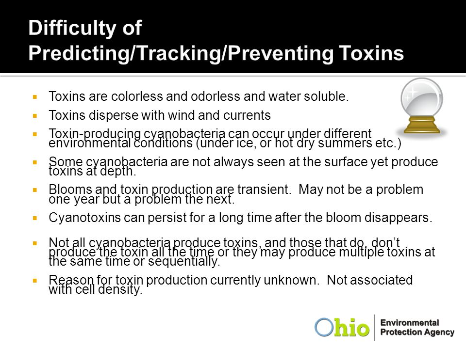  Toxins are colorless and odorless and water soluble.  Toxins disperse with wind and currents  Toxin-producing cyanobacteria can occur under differ